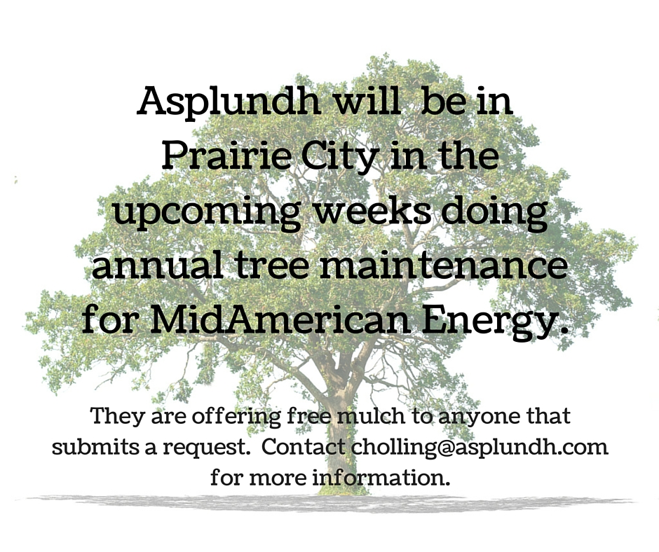 Asplundh tree.